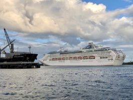cruise ship one the Brisbane River